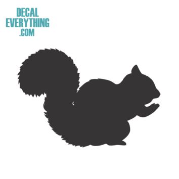 Squirrel Decal - Animal Decals