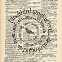 Song Lyric Print Blackbird The Beatles Art On by TexasGirlDesigns