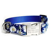 Designer Dog Collar With Personalized Buckle - Daisy