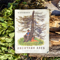 "Russian Children's Book ""Fox's Bread"" Tales / ""Лиcичкин Хлеб"" Cute Soviet Woodland Stories for Children, Vintage Paperback USSR"