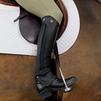 Ovation® Precision Fit Half Chaps | Dover Saddlery