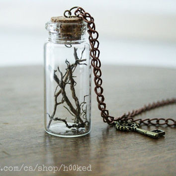 Bottled treasure - ROOTS - Natural history specimen pendant necklace
