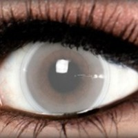 Blind Theatrical Contact Lens by ExtremeSFX