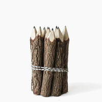 Small Twig Pencils