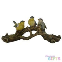 Song Birds On A Branch