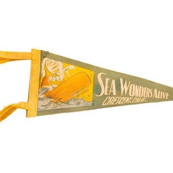 Vintage Sea Wonders Alive, Crescent, Calif. Felt Flag Pennant