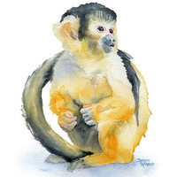 Monkey Watercolor Painting Giclee Print 8 x 10 - Spider Monkey Art