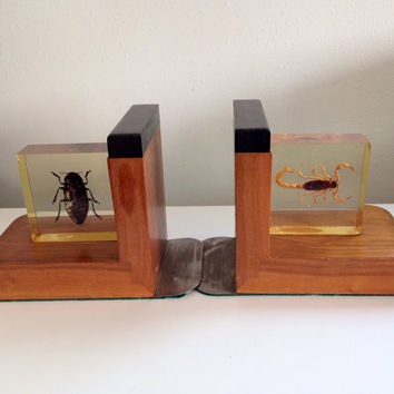 Vinage Book Ends Rare Entomology Book Ends of a Beetle and Scorpion in Acrylic BUGS
