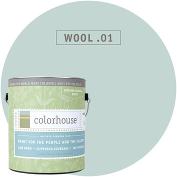 Paint by Colorhouse WOOL .01