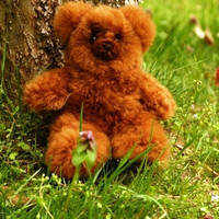 Top Quality Lanart Classic Alpaca Teddy Bears 9""