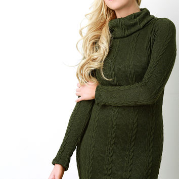 Knit Pattern Turtle Neck Long Sleeve Sweater Dress