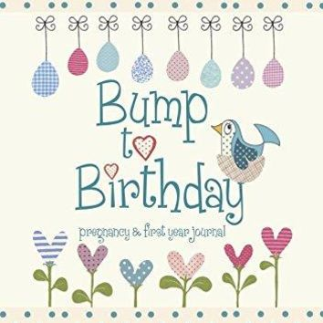 Bump to Birthday Pregnancy & First Year Baby Journal