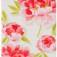 Agent18 P4SSS/51 SlimShield Limited Hard Case for iPhone 4/4S - 1 Pack - Retail Packaging - Vintage Floral