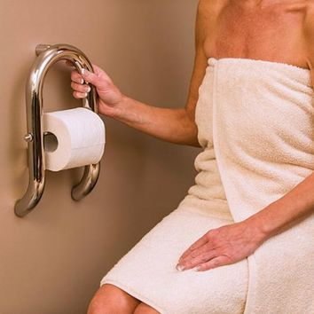 Toilet Roll Holder & Grab Bar in One