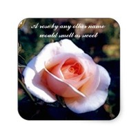A Rose by Any Other Name Rose Photograph Square Stickers from Zazzle.com