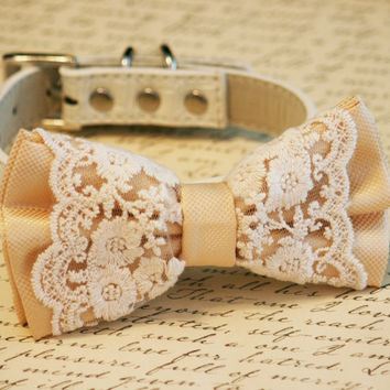 Ivory Lace Dog Bow Tie, Vintage Wedding, Pet wedding, Ivory Wedding