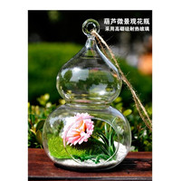 Calabash Shaped Hanging Glass Flower Vase Bottle Terrarium Container