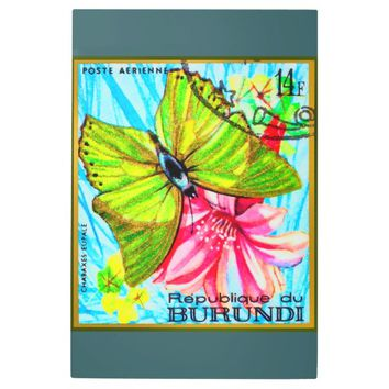 Butterfly Charaxes Eupale Metal Photo Print