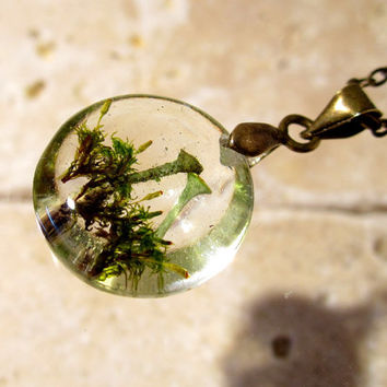 Pixie Cup Lichen (Cladonia sp.) and Dicranoweisia cirrata  Necklace, Moss Jewelry, Plant Jewelry, mycology, fungi, woodland, nature