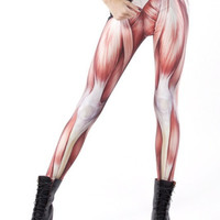 Muscle Leggings S-4XL