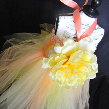Peach Dream Tutu-Baby Tutu Dress-Toddler Tutu Dress-Peach Tutu Dress-Tulle Tutu Dress Yellow Tutu Dress-Tutu-Flower Girl Dress-Photo Prop