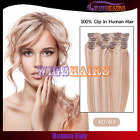 #27/613 Mixed Color Straight Clip in Human Hair Extensions