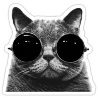 Sunglasses Cat - black T-Shirts & Hoodies