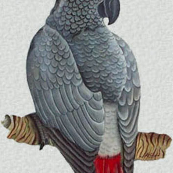 African Grey Parrot Metal Art Wall Hanging - Hand Painted African Grey - Tropical Bird Art - Recycled Steel Drum Metal Art - K-7047