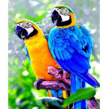 5D Diamond Painting Two Parrots