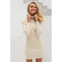 Avery Turtleneck Dress