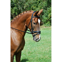 Red Barn Travers Dressage Bridle with Flash and Rubber Reins