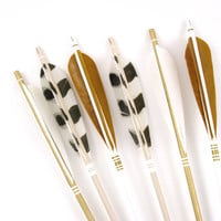 Tall Metallic Gold Arrows with Animal Print Feathers and Gold Feathers Arrow Wall Display in Brown Glass