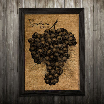 Berry poster Grapes print Burlap art Kitchen print BLP701