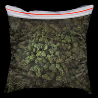 Big bag of weed pillow