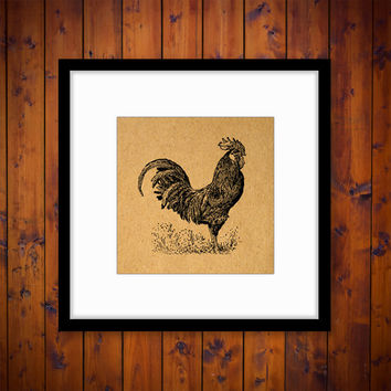 Rooster Print Art Antique Artwork Farm Animal Chicken Home Decor Vintage Print with Antique Paper Style Background No.3175 B2 8x8 8x10 11x14