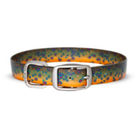 Dublin Dog KOA Waterproof Dog Collar - Brook Trout
