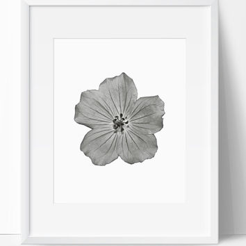 Wall Print, Flower Art, Home Decor, Digital Print, Wall Art, Printable, 8x10, Instant Download, Print Art, Nature Art,  Black and White