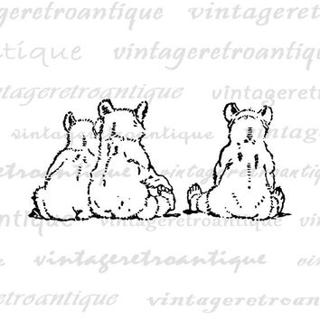 Bear Digital Graphic Image Three Bears Download Nursery Cute Animals Bears Printable Antique Clip Art for Transfers etc HQ 300dpi No.4629