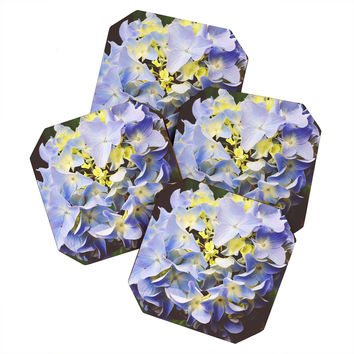 Allyson Johnson Hydrangea Flower Coaster Set