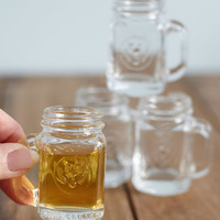 Kikkerland Rustic Preserve Your Verve Shot Glass Set