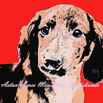 Dachshund Print Photography - Red Wall Art by AstonAcresDachshunds