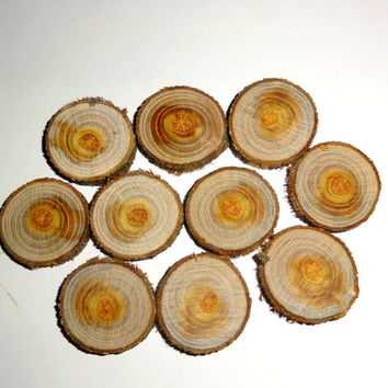 1.2 inches small wood slices. Jewelry supplies, wall art, small wooden discs. Maclura Pomifera, Osage Orange wooden slices. 10 qty for DIY.