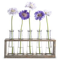 Vase Holder w/5 Glasses