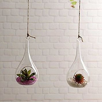 Pack of 2 indoor outdoor Hanging Glass Candle Holders Hanging Succulent Plant Pots Glass Hanging Planters Glass Plant Containers Hanging Flower Pots Hanging Air Plant Pots Hanging Terrariums