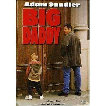 DVD - Big Daddy - Used