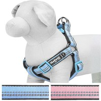"""Blueberry Pet Step-in Harnesses 3M Reflective 3/4"""" Medium Spring Pastel Baby Pink Adjustable No Pull Padded Dog Harness, Matching Collar Available Separately"""