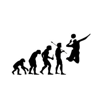 Evolution of Volleyball Players Car Sticker/Decal