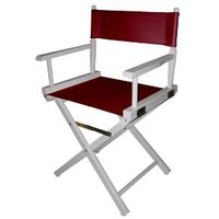 Director's Chair - White Frame : Target