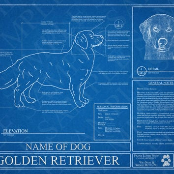 Customized Golden Retriever Blueprint / Golden Retriever Art / Golden Retriever Wall Art / Golden Retriever Poster / Golden Retriever Print