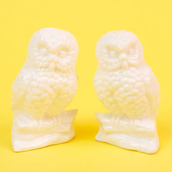 Vintage White Owl Salt and Pepper Shakers Retro